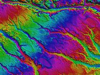 tn_Rex,_NC_LiDAR_DEM_of_Carolina_bays[reduced-to150from300dpi].jpg